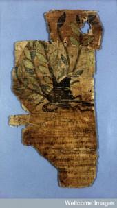 Johnson papyrus, verso. Phlomos