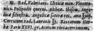 J. B. van Helmont, Tumulus pestis, translated  by J. Seyfrid, Sulzbach 1681, p. 325