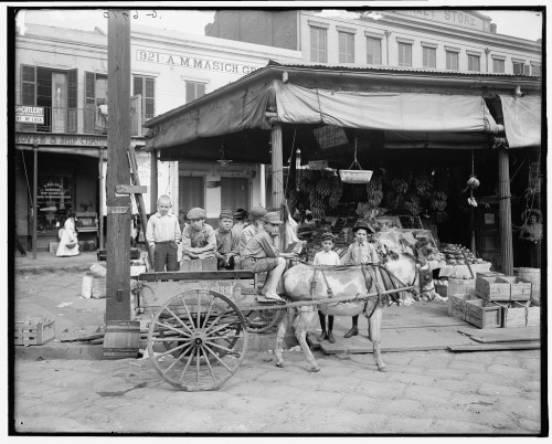 The New Orleans French Market served as a social and economic space for city residents, travelers, slaves, free people of color, and indigenous people. French Market, New Orleans, 1900-1910, Detroit Publishing Co., Library of Congress.