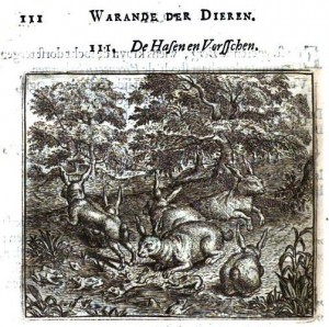 Copper engraving by Marcus Gerards (1521-1590) to the fable of the hare and frogs as told by Jean de La Fontaine (1621-1695) and translated by poet and playwright Joost van den Vondel (1587-1679) in Vorstelijcke warande der dieren (Amsterdam 1617, 1730).