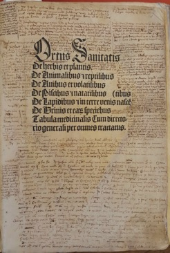 Hortus sanitatis, [Strassbourg, 1497], Biblioteca Nazionale Marciana (BNM), Inc. 333.  Used with permission.