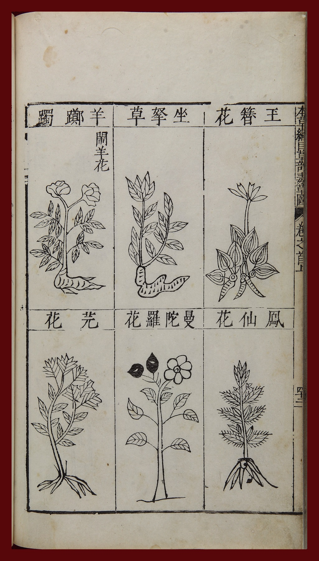 Additional images of toxic medicinal plants from Li Shizhen, Compendium of Materia Medica. Sit-grasp herb is in the middle of the top row, and datura flower in the middle of the bottom. Image credit: National Library of China. Posted on-line at the World Digital Library.