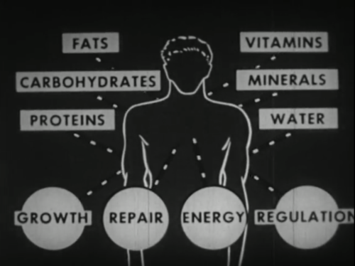 The building blocks of good health. Image credit: The Internet Archive, A/V Geeks Collection.