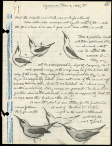 Acc 01-096, Box 1, Folder 10; This is a page from Marin H. Moynihan's field notes on Cyanerpes or Honeycreepers. These observations were made on Barro Colorado Island from 1957 to 1963.