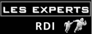 """""""Les Experts RDI"""" : un projet de capitalisation des savoirs pour Michelin"""