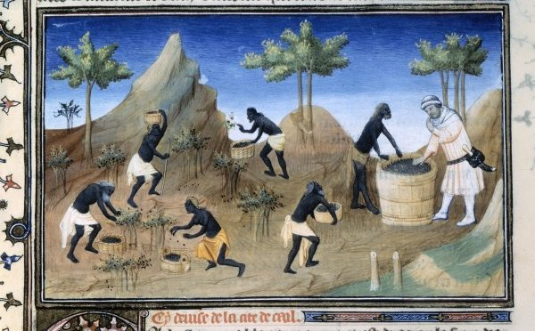"""Colloque """"Le poivre, de l'Antiquité à l'époque moderne : un luxe populaire ?"""", 23-15/11/2017, Paris"""