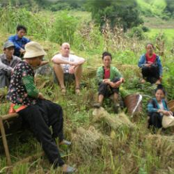 Richard Owens with Hmong farmers during harvest season for dry rice in Thuan Chau district, Son La Province, Northwest Vietnam.