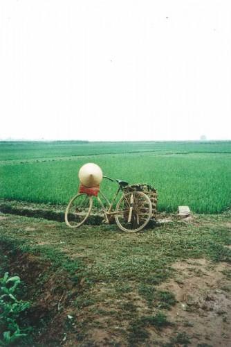 HoangDieu_1996