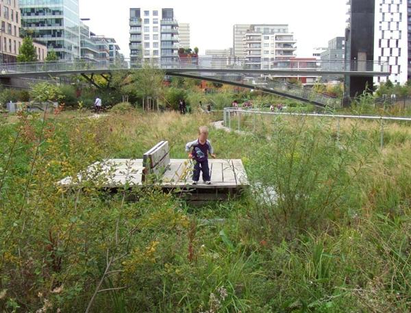 Exposition ville nature cit de l architecture et du for La ville nature