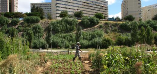 Lisbonne, Vallon de Chelas Habitat et jardins, Photo : Pedro Pacheco