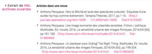 Option d'affichage des publications sur une page chercheur